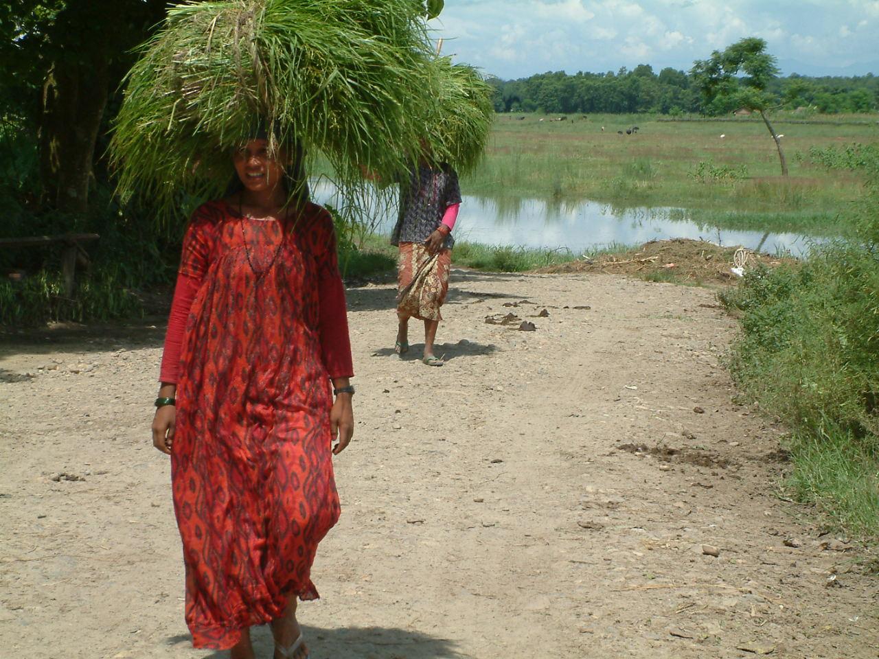 30 juli 2005 Chitwan National Park
