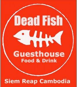 dedafish.jpg-for-web