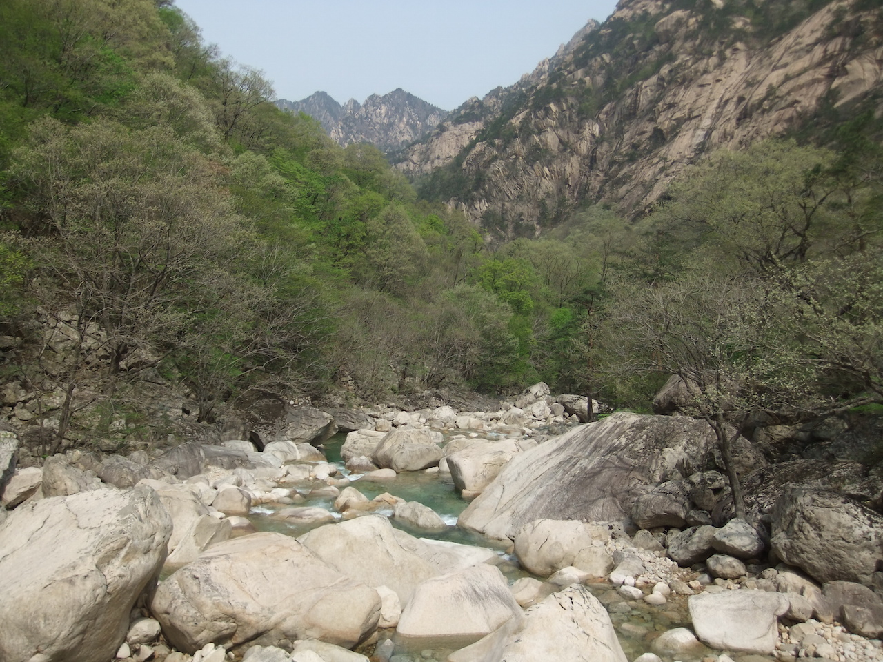 29 april 2012 Kumgang – Wanson