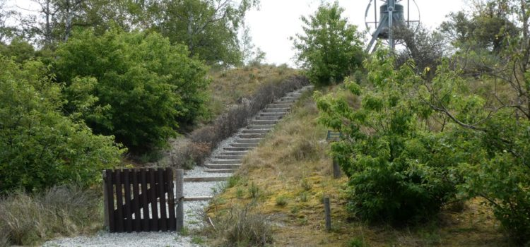 Maandag 8 juni 2020 Wassenaar – Scheveningen